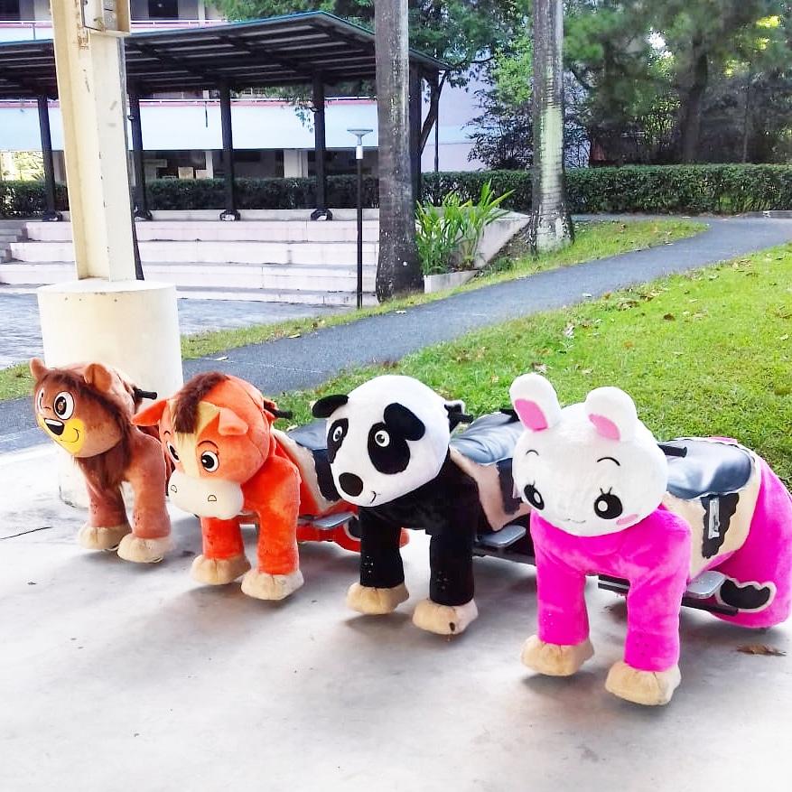 Animal Rides Rental in Singapore